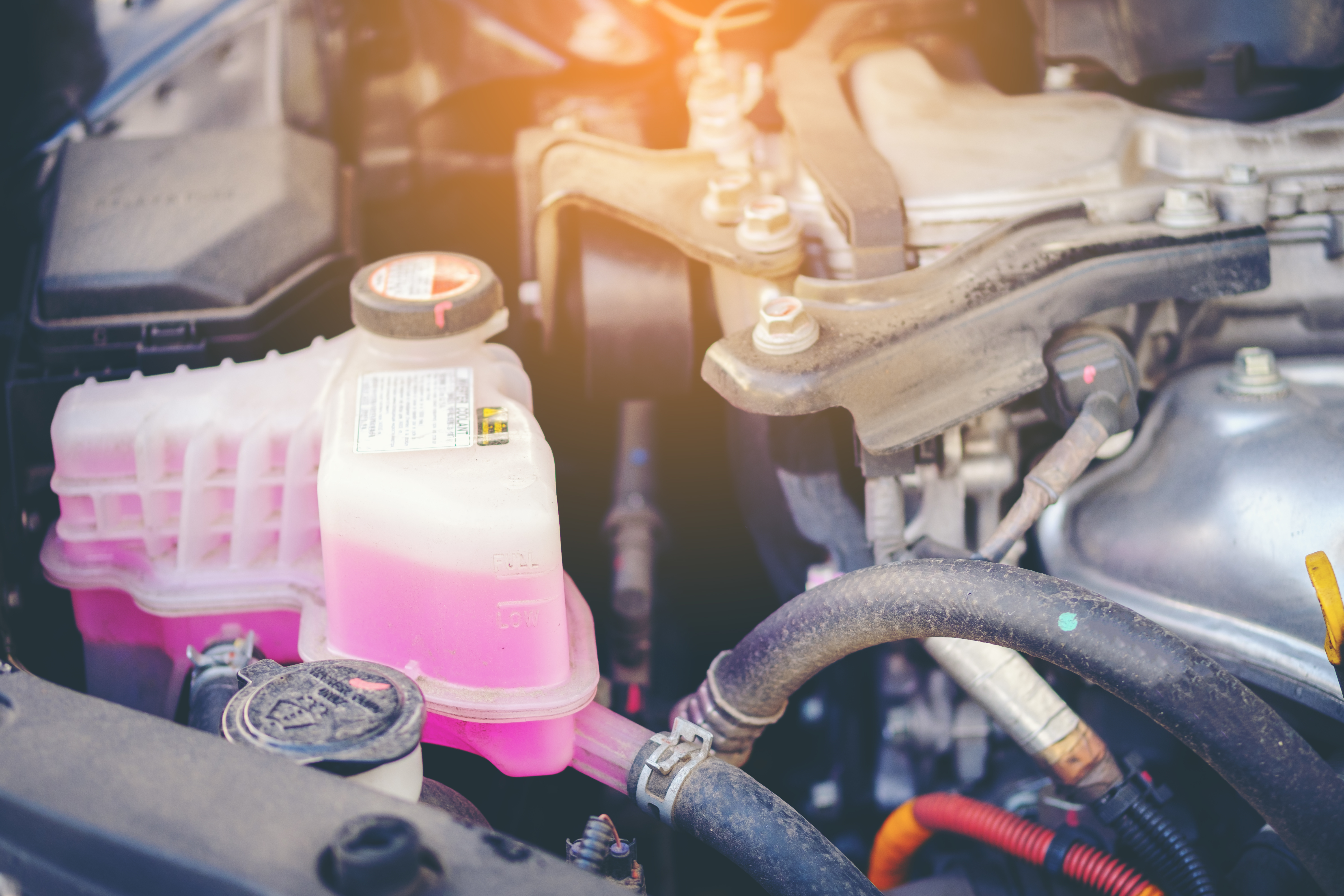 Signs Your BMW Has a Coolant Leak
